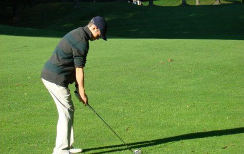 A Walpole golfer prepares a tough chip.
