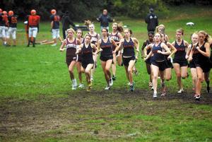 Cross Country Teams Score Big