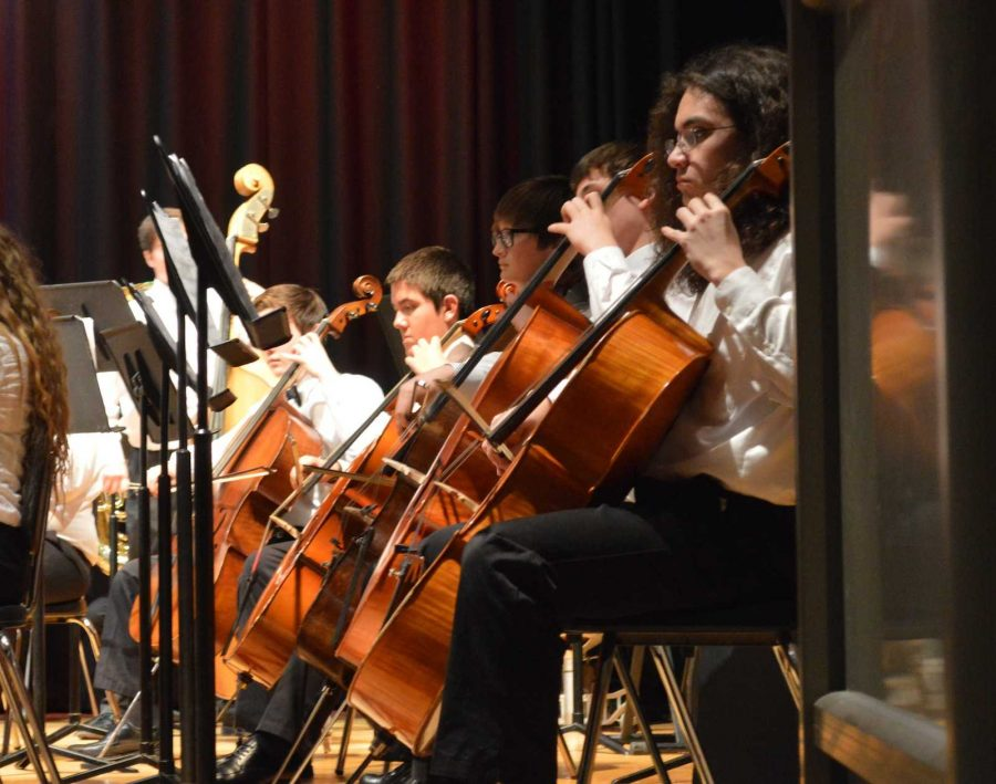 Members of the Orchestra perform