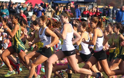 Gallery: Cross Country Competes in Division 3 Meet