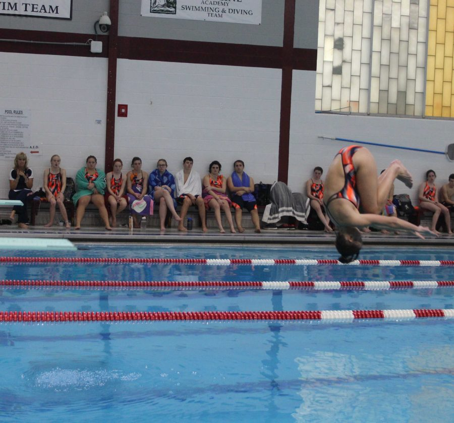Gallery%3A+Walpole+Swimming+and+Diving+Beats+Dedham