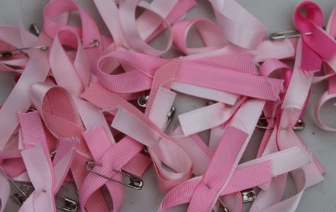 Student Council Hosts Pink Walk for American Cancer Society