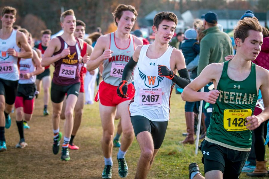 Boys and Girls XC Advance to All States for the First Time in History