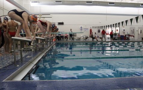 Sophomore, Erin Foley, prepares to dive during the meet against Brookline.