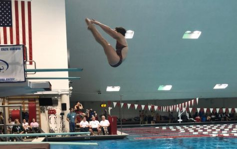 Freshman Diver Amanda Melish is a State Champion and School Record Holder