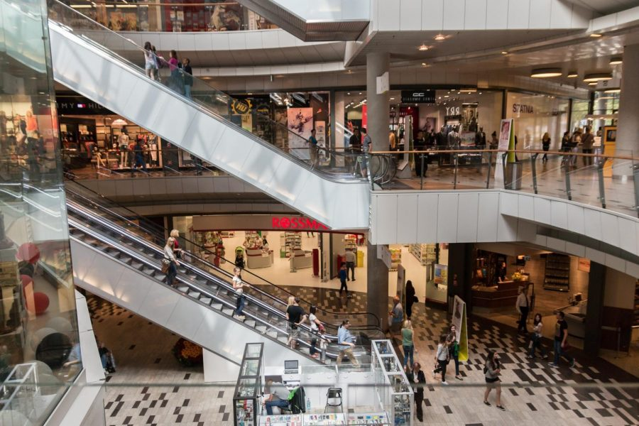 To Shop Online or In Store: The Debate Between Students Shopping Choices