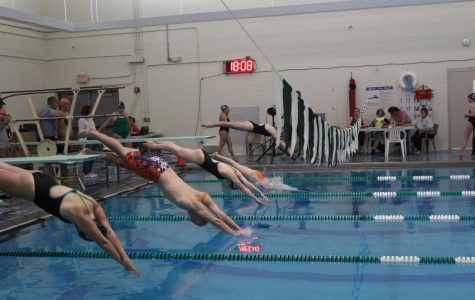 Rebels Swim and Dive Defeat Ursuline on Senior Night