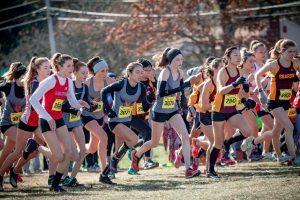 Cross Country Places Second at Division 3 Championships