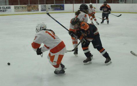 Girls Hockey Defeats Newton-North